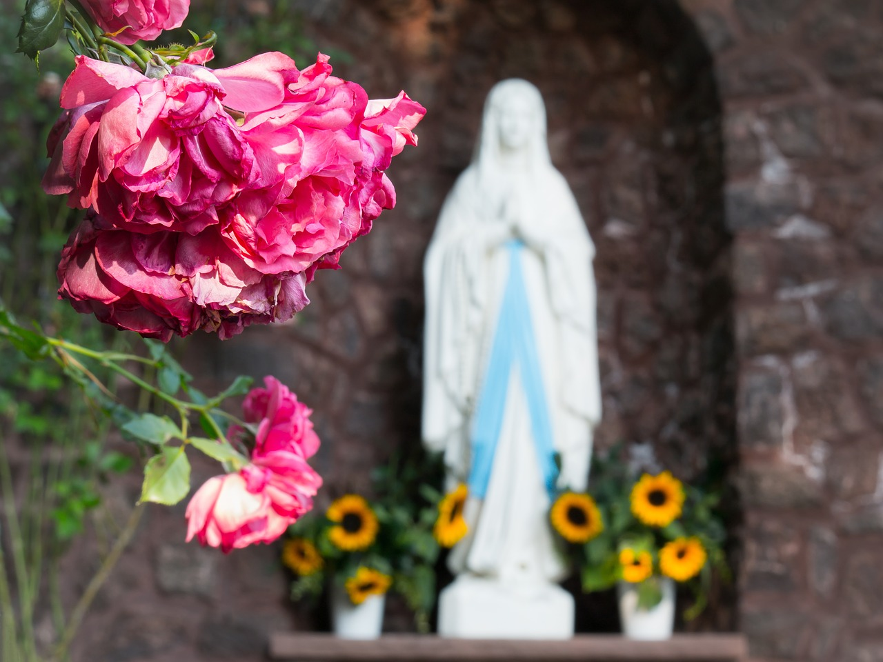 Mother of Peace: A Devotion for The Solemnity of the Blessed Virgin Mary