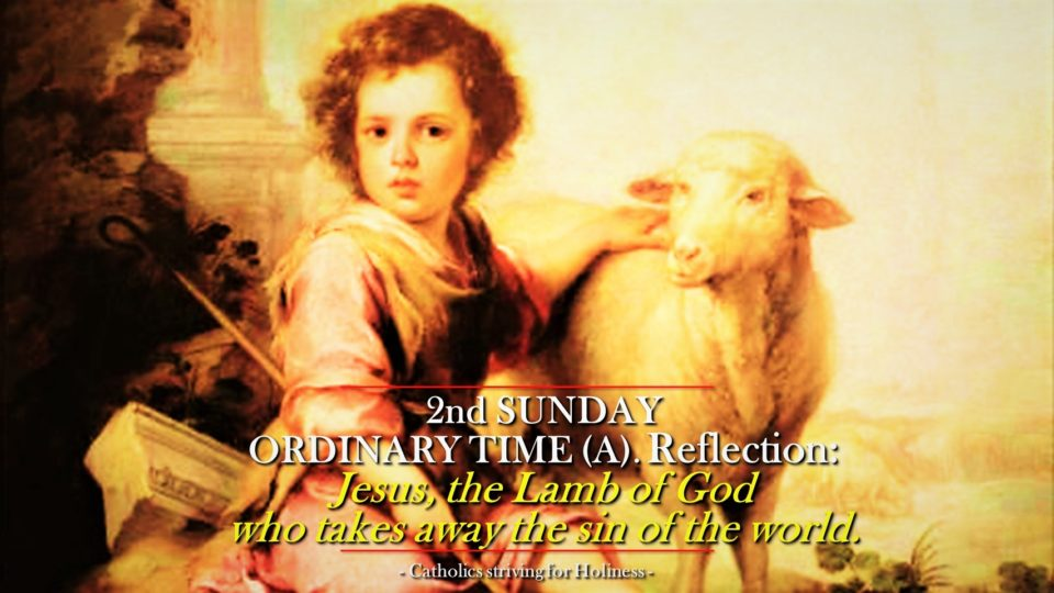 "2nd Sunday Ordinary Time (Year A) Reflection. JESUS, ""THE LAMB OF GOD WHO TAKES AWAY THE SIN OF THE WORLD."""