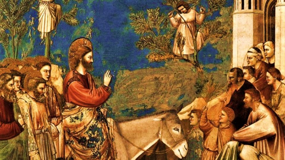 PALM SUNDAY REFLECTION.  Summary vid + full text.