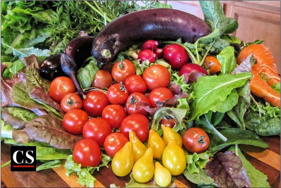 vegetables, fresh, garden, food, market, vegetarian