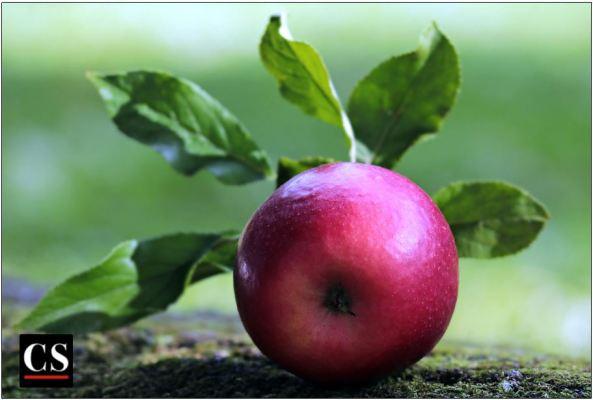 apple-2924531_1280