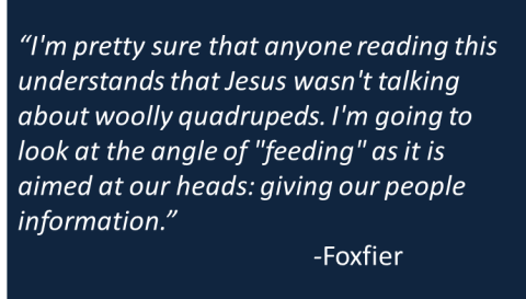 Foxfier - Feeding Sheep