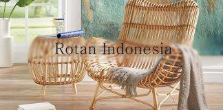 Mengenal Politur Kayu Untuk Rotan Indonesia