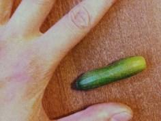 Itty bitty zucchini