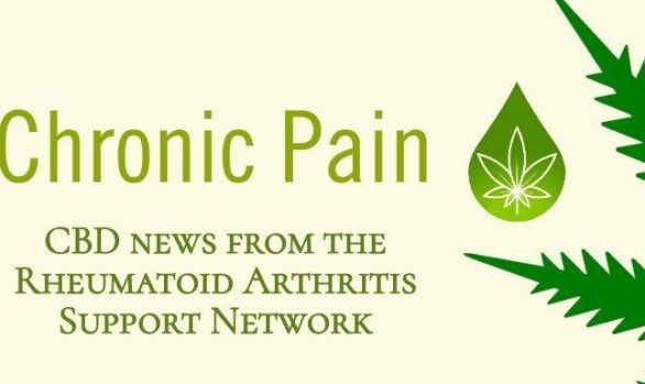 Promising Advice on Arthritis Pain Management | Catnip Bill