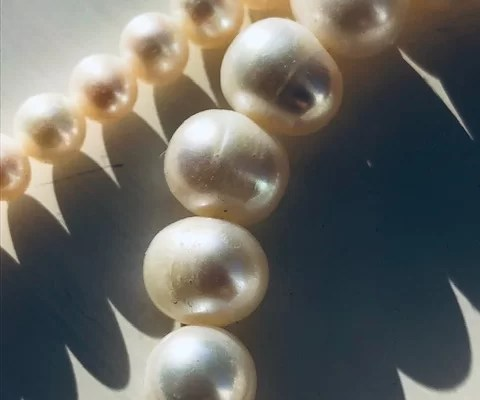 The pearl and oyster analogy