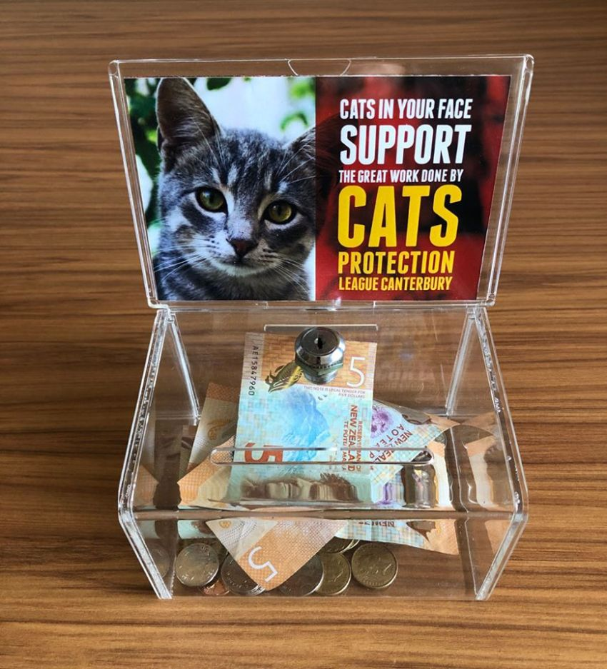 "Small plastic donation box with a cat photo on it and the caption ""Support Cats Protection"""