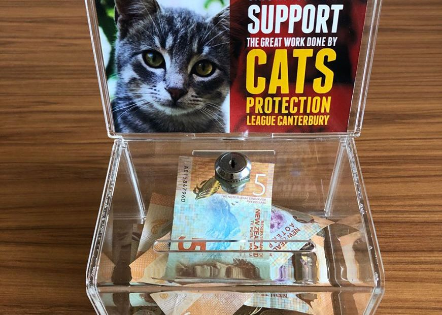 """Small plastic donation box with a cat photo on it and the caption """"Support Cats Protection"""""""