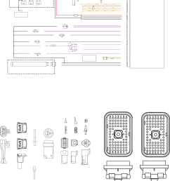 c 10 c 12 3406e c 15 and c 16 engine harness wiring diagram [ 1413 x 4432 Pixel ]