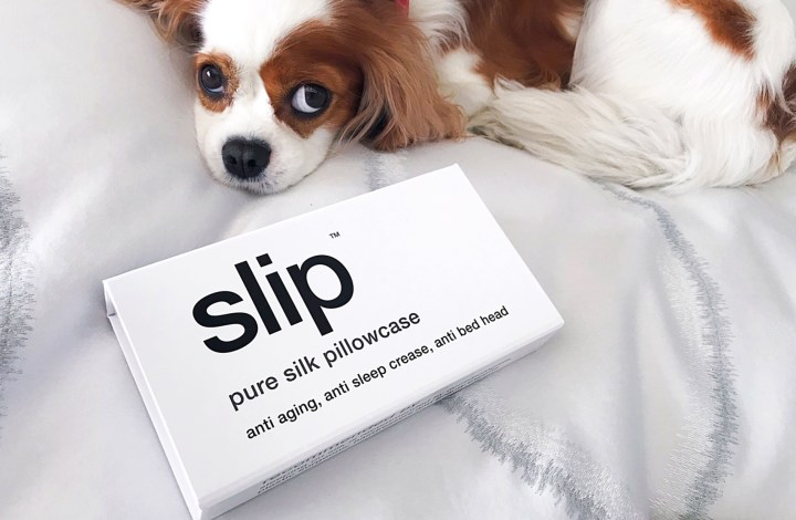 Slip Pillowcase Review Fascinating Slip Silk Pillowcase Review Archives Cat's Daily Living