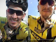 Cyclistgotkissing CAT BEHAVIOR