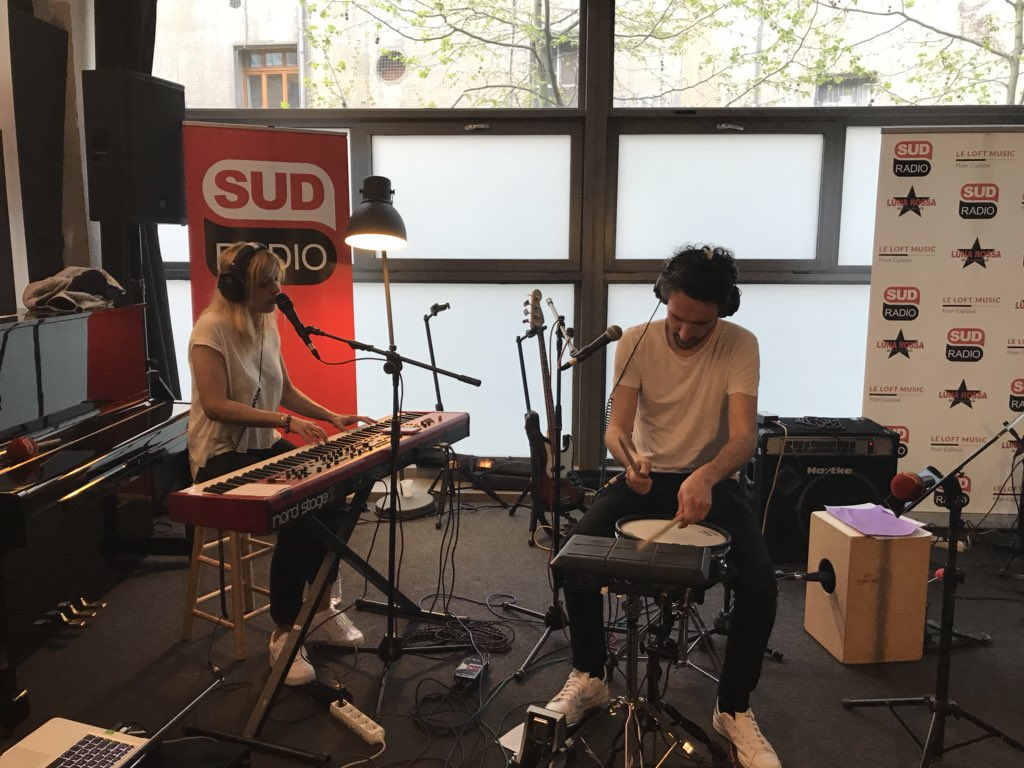 cats on trees sud radio