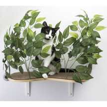 Canopy Cat Wall Shelves With Leaves - Set Of 2