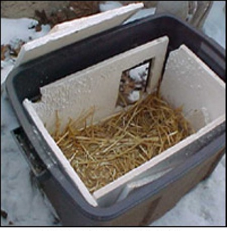 Image result for cats in home made shelters
