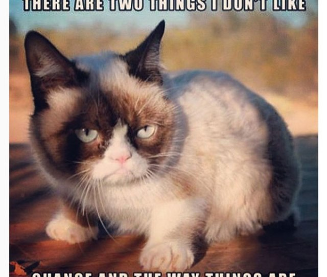 Two Things I Dont Like Meme Posted By Awwunicorns Grumpy Cat