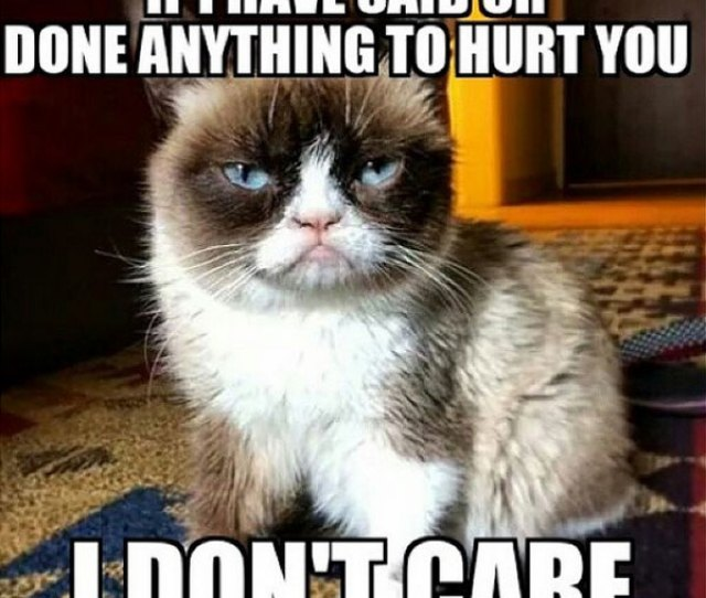 Hurt You I Dont Care Meme Posted By Rush_rox
