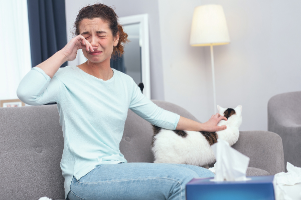 People who dislike cats may have had a negative experience, such as having extreme cat allergies. This is when their body's immune system reacts to the proteins in the cat's dander, saliva or urine.