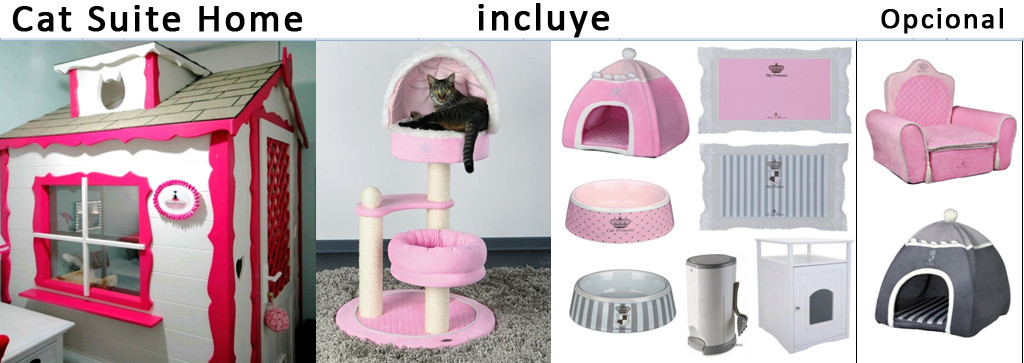 Catsuitehome1