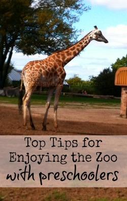zoo tips