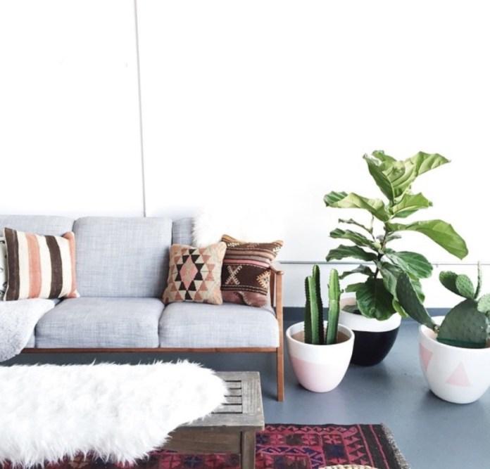 cara membuat ruangan lebih segar