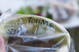 ansäen-tomate-vorziehen-tri