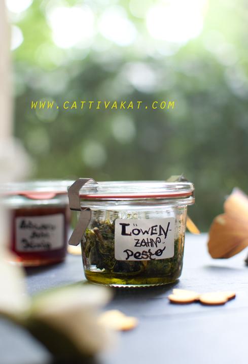 Rezepte-Löwenzahn-Löwenzahn