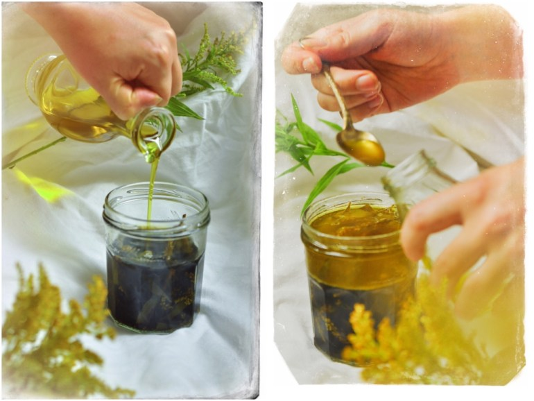 Goldruten Tinktur Öl