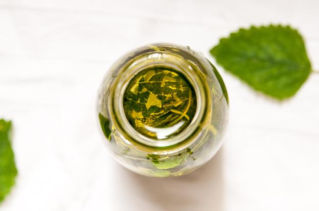 Diy Zitronenmelissenöl