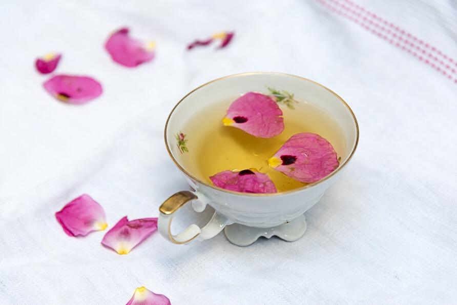 Zistrose Heilpflanze Tee