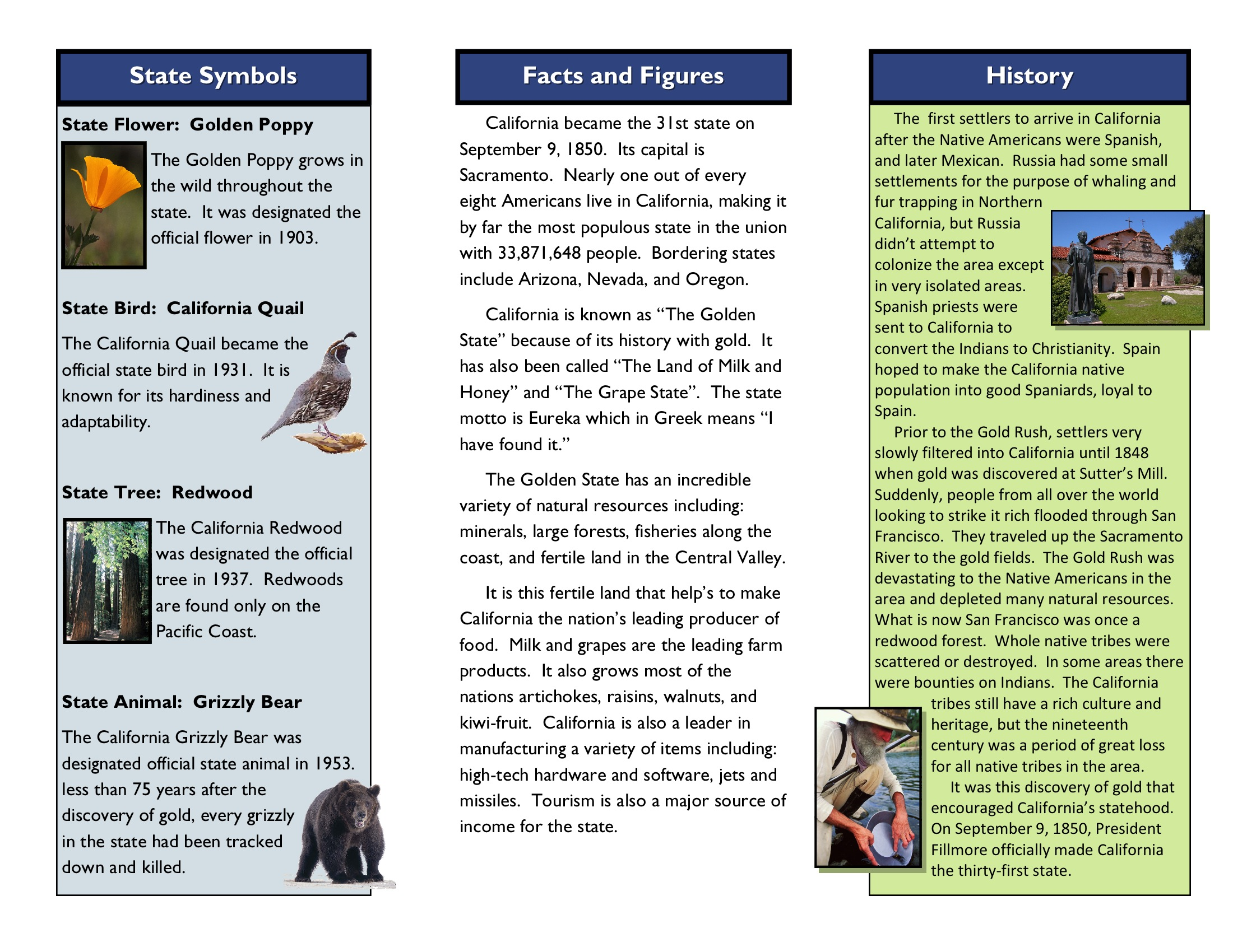 Harrington Laurie Grade 6 State Brochure Project
