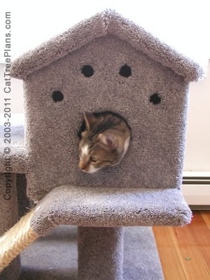 Cat Tree Plan 1 Cat Tree Plans PDF Download Cat Tree Plans