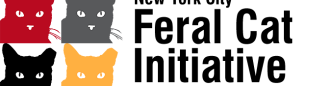 NYCFCI-Logo-960x250