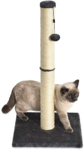 AmazonBasics Medium Cat Scratching Post