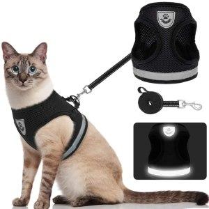 Kooltail Escape Proof Cat Harness
