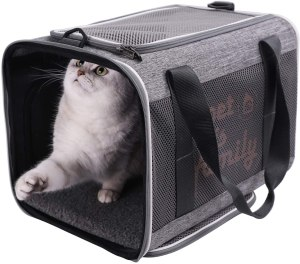 Petisfam Large Cat Carrier