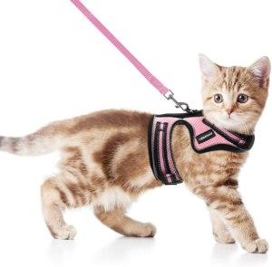 Rabbitgoo Cat Harness And Leash
