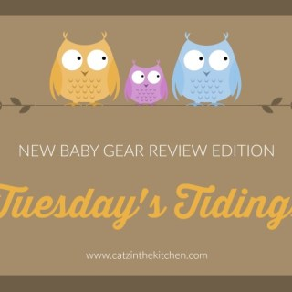 Tuesday's Tidings – New Baby Gear Review Edition: Angelcare Bath Support