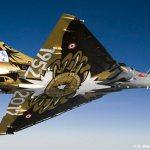 Último esquadrão fundador do Tiger Meet é dissolvido na França