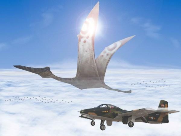 De boato em boato, a única coisa de concreto é que as referidas forças aéreas estão cada vez mais paradas no Tempo...