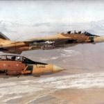 F-14 Tomcat 'bomber'