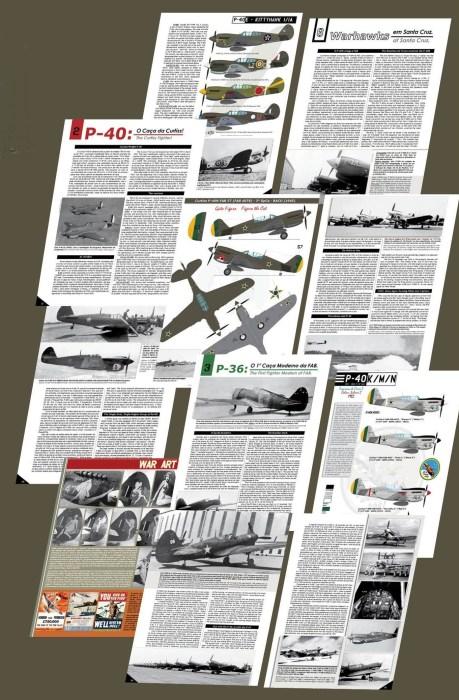 O livro conta com informações detalhadas sobre o P-40 na FAB.