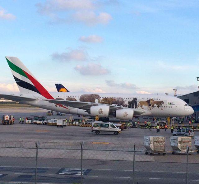 A380 brasil 2 - BRASIL: Maior avião comercial do mundo, Airbus A380, passa a operar em Guarulhos