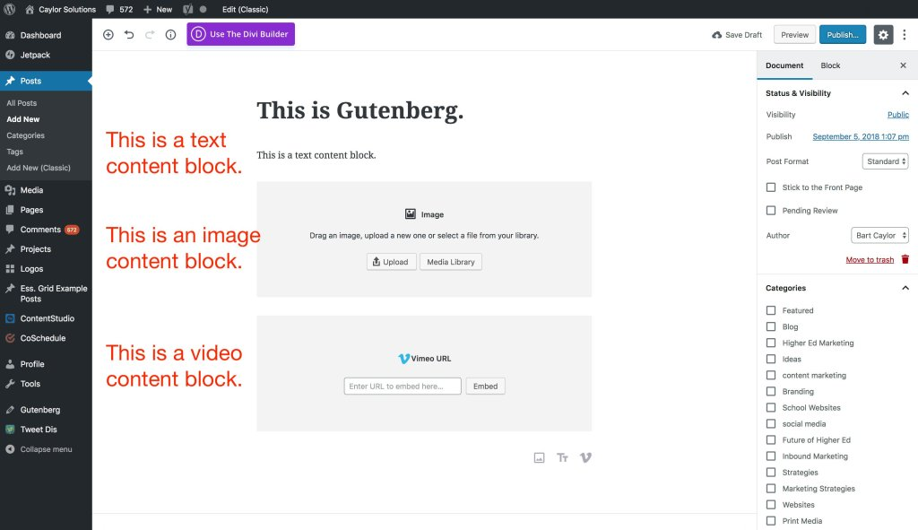 Can Gutenberg hurt SEO for education marketers?