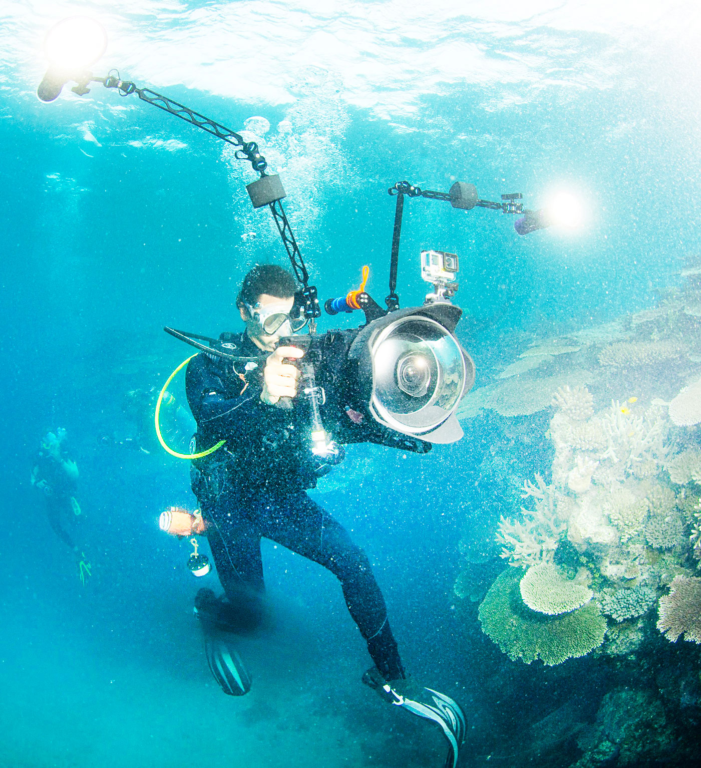 Chasing Coral Inspires Audiences In Cayman Repeating