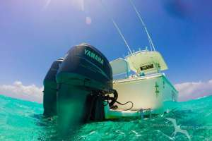 the aft of our regulator 26fs private charter boat as seen from the water in grand cayman