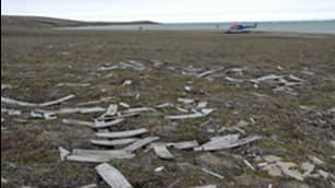 Before departing to go to another ship, the crew of HMS Investigator buried their cargo on Banks Island. Remains of the barrels indicate the cache's location.