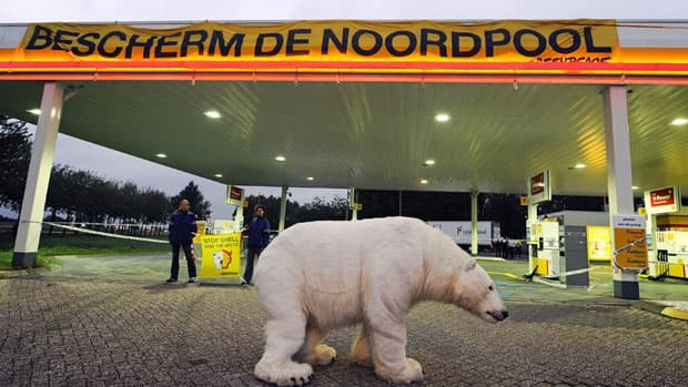 Greenpeace activists stand near a stuffed polar bear at a Shell gasoline station in the Dutch town of Breukelen in September to protest against drilling in the Artic sea.