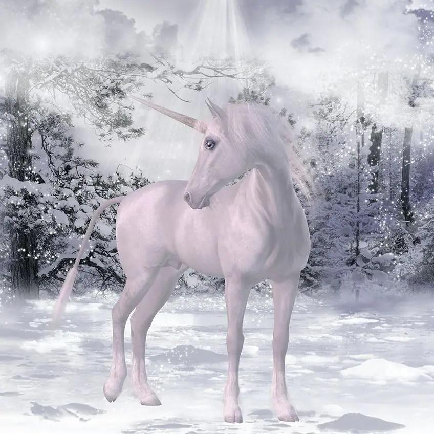 Majestic And Mythical Unicorns Explore Awesome