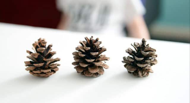 winter craft for kids pine cone snowy owls
