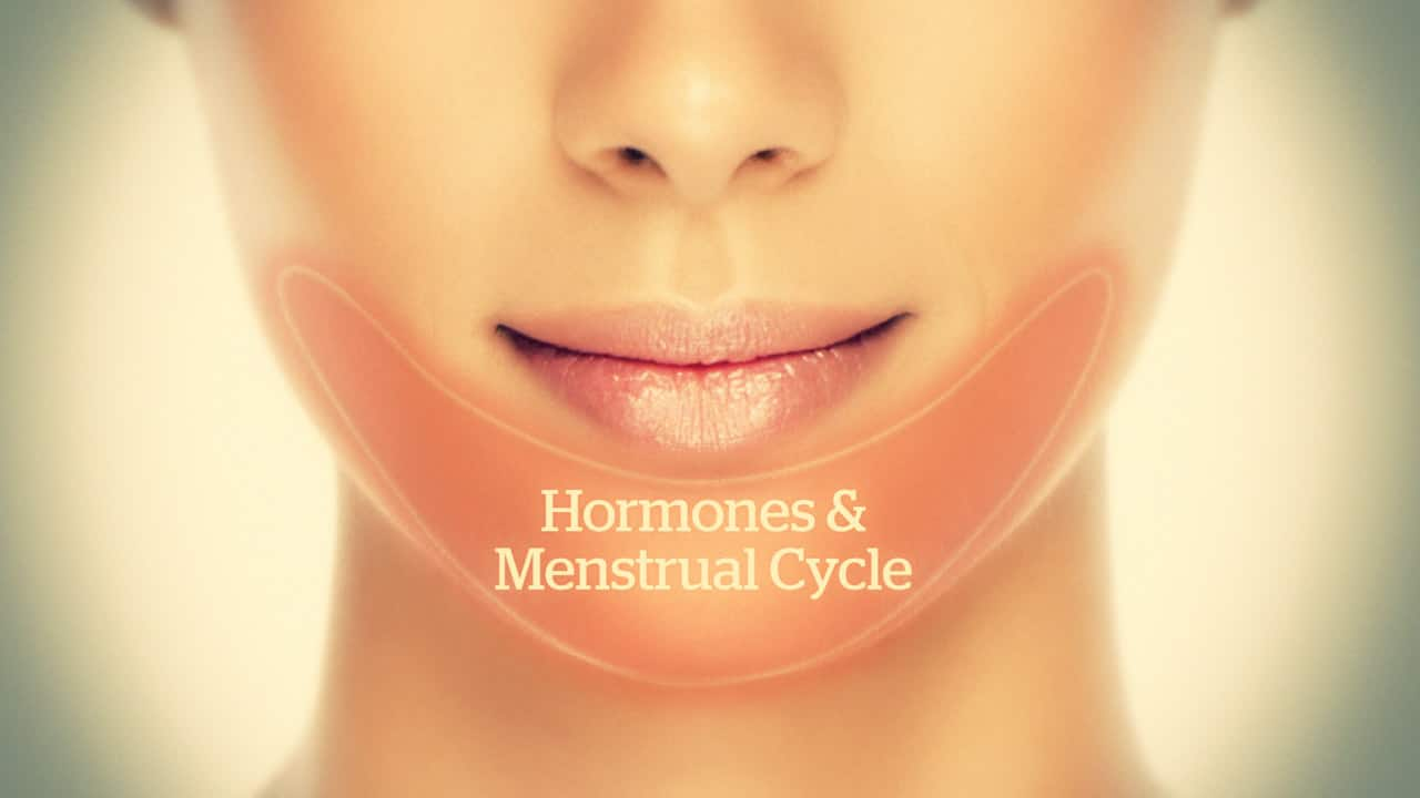hormonal acne diagram for 700r4 trans face mapping and solutions